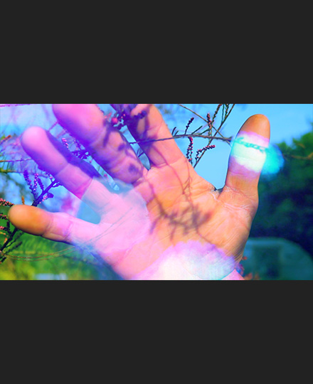 Mercy Garden Retour Retour (from the Mercy Work Family) (videostill), 2014