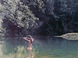 Renoir renoir the national museum of modern art kyoto for Vaisselle dejeuner sur l herbe