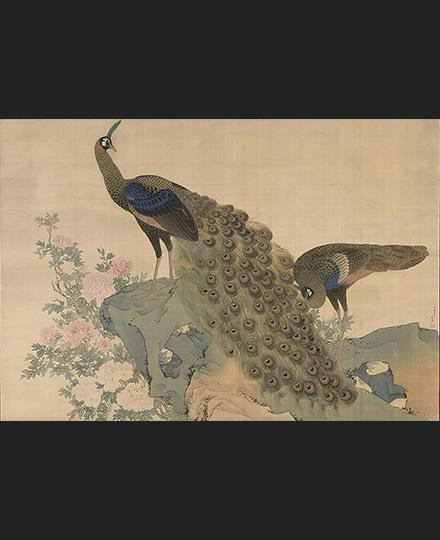 円山応挙 重要文化財《牡丹孔雀図》1771(明和8)年 京都・相国寺