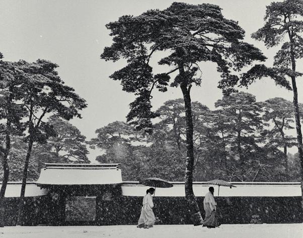 ヴェルナー・ビショフ《境内の神官たち、明治神宮》1952年